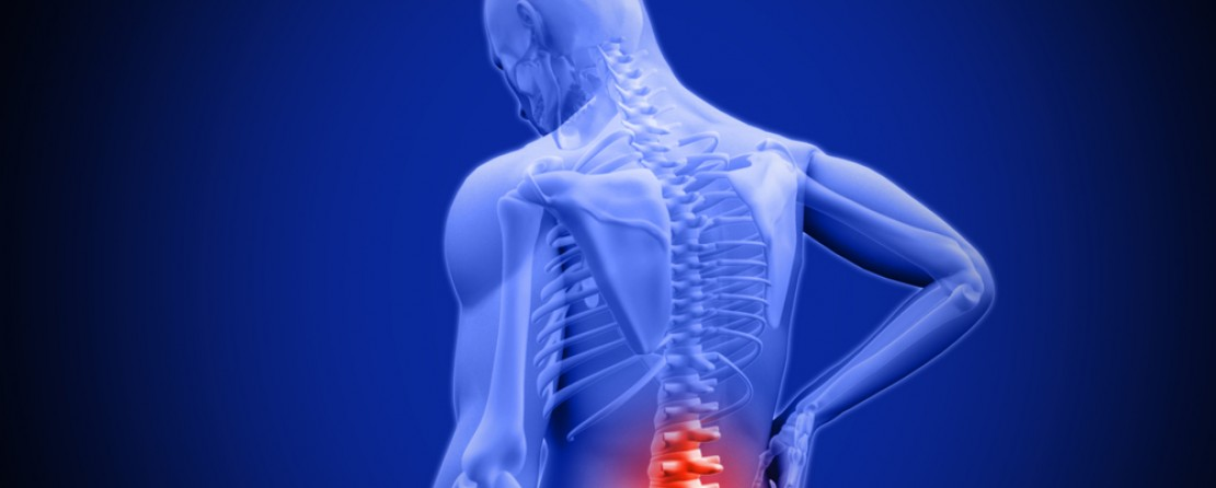 Low back pain – finding the source of pain